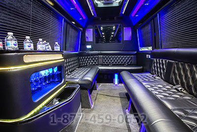 Party Bus (Sprinter) - 12-14 Passengers
